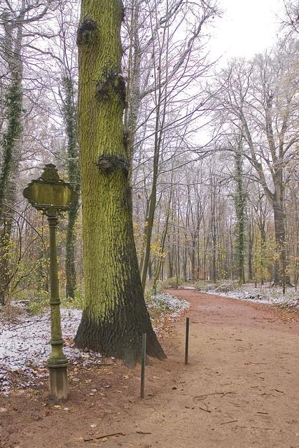 Cambre all e bois de la cambre bruxelles camberbos for Bois de la chambre bruxelles