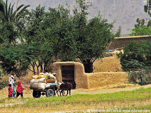 life in a village or a What is the difference between village life and city life - village life is calm and quiet city life has more facilities and opportunities than village life.