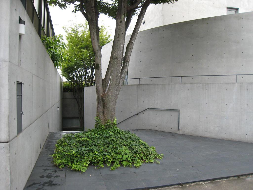 Kidosaki house 06 architect tadao ando flickr for Kidosaki house