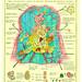 anatomy of the mortal soul by adam dant