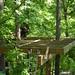 Treehouse 10