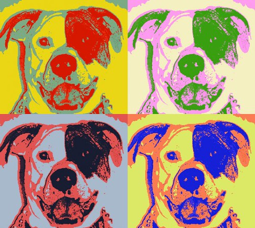 Roxy Cohen 4 Panel Colored Pop Art By Mikey Cohen Flickr