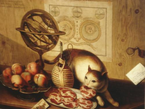 Cat Food Meat Deriviatives