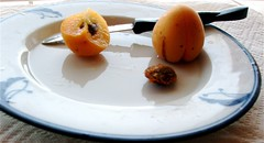 sliced_skp_and_hunza_apricots.jpg | by laderafrutal