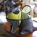 rumblebee11.jpg