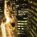 Toronto by Night-3 [Urban Snakes]