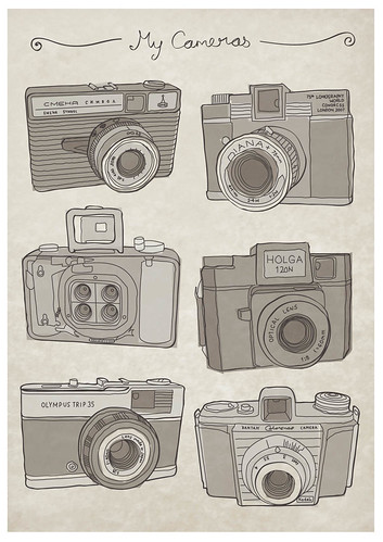 Cameras - 'vintage' colour option | by What Katie Does