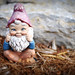 The Gnome of Innocence