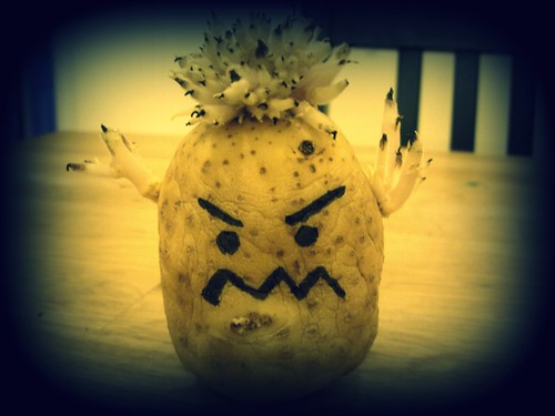 Scary Potato Monster Danielle Dyer Flickr