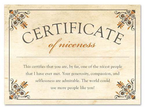 Certificate Of Niceness Melissa Morris Flickr