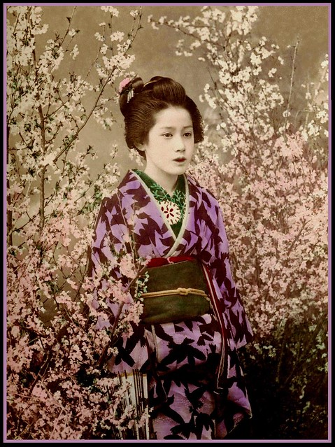The Geisha Yes I Know This Is A Long Caption It Was