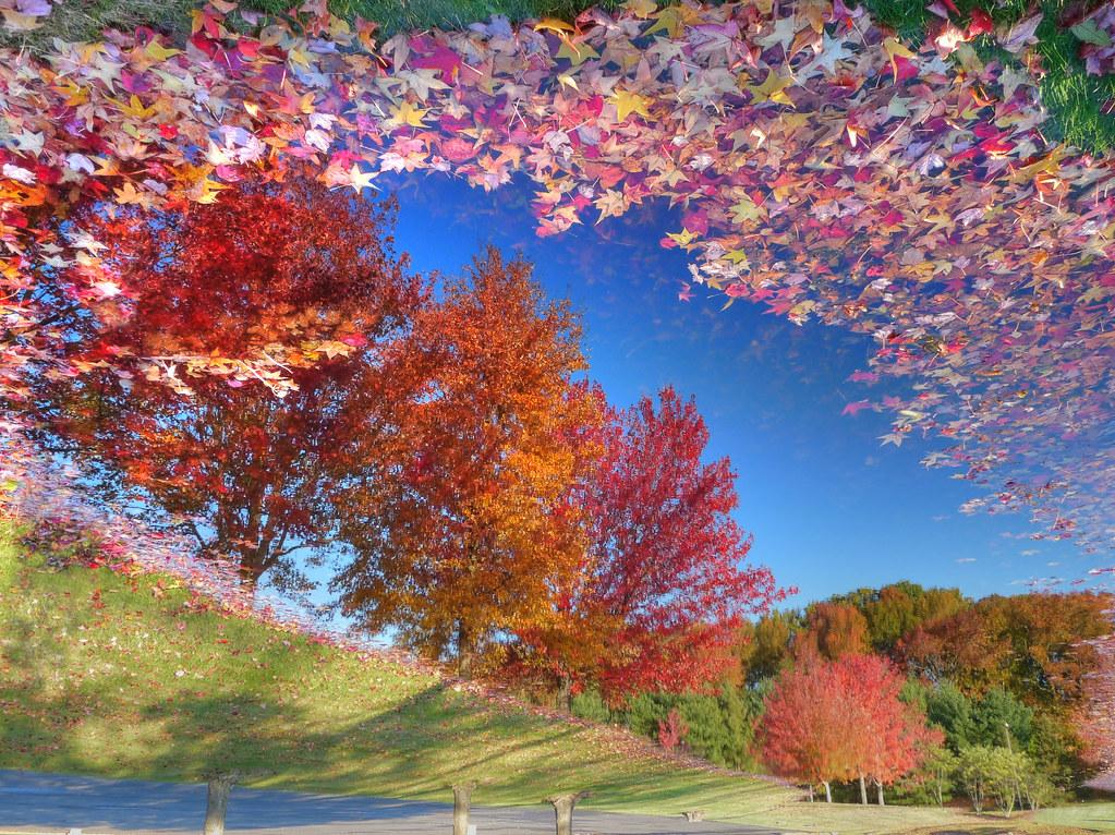 Four Seasons Nursing Home Abergavenny