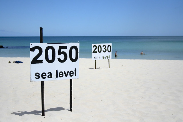Image result for sea level rise