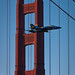 blue angel flyby of the golden gate bridge 2008