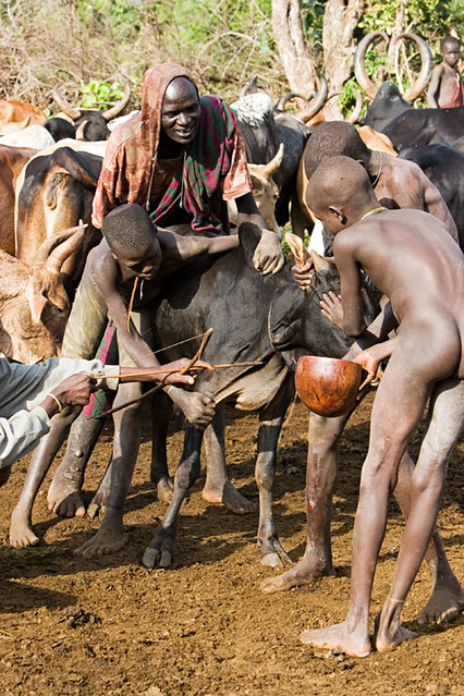 image Young african twink galleries and buff