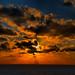 Holiday Sunset at Sea