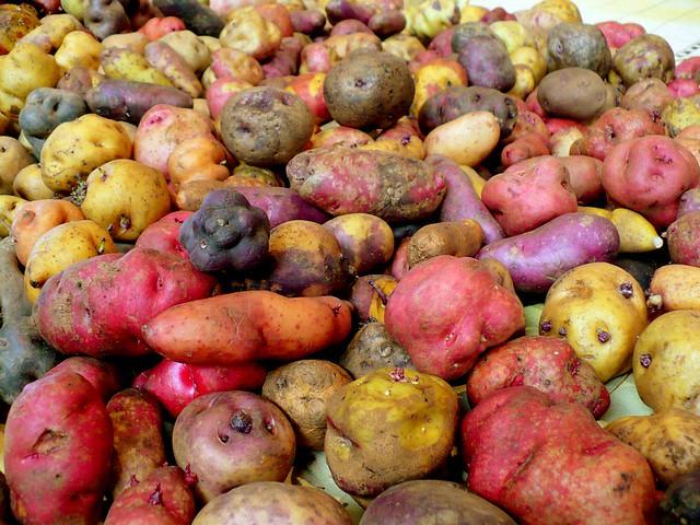 Peru S Potatoes International Year Of The Potato