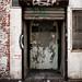 Streetwise door
