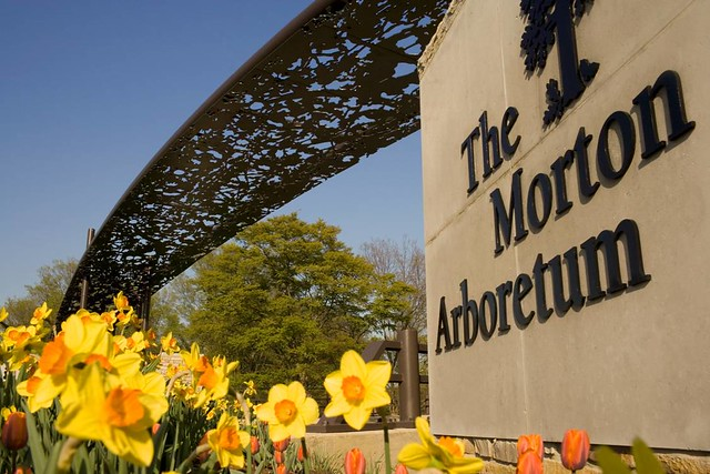 The Morton Arboretum The Arboretum Is An Engaging And