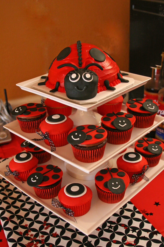 ladybug baby shower here is the ladybug cake and matching