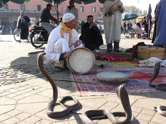 Encantadores de serpientes en la Plaza Jemaa el-Fna de Marrakech