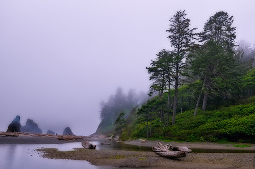 Misting the Pacific Northwest Coast | by Fort Photo