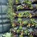 more vertical farming
