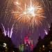 """""""Pixie Dust"""" - Cinderella's Castle"""
