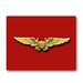 Marine flight officer wings - stationery