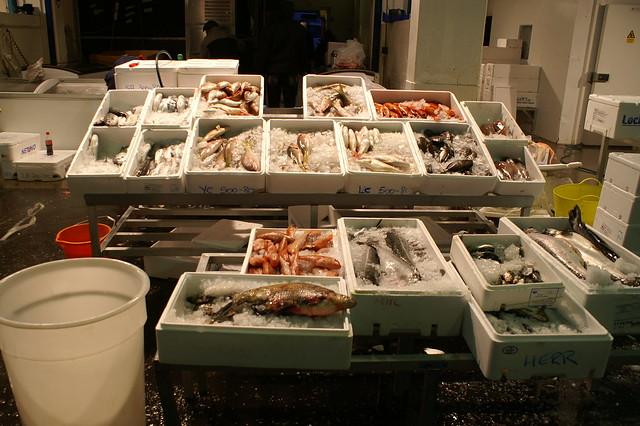 Wholesale fish market birmingham 1 flickr photo sharing for Wholesale fish market