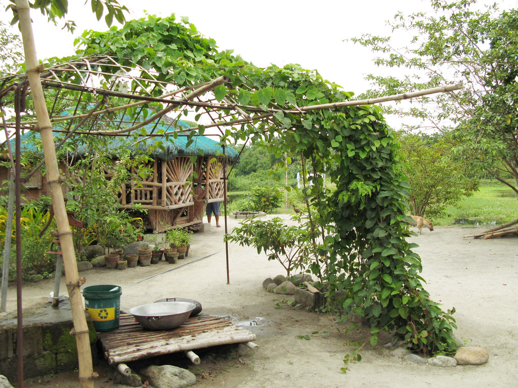 Trellis And Water Pump At My Home In Pampanga