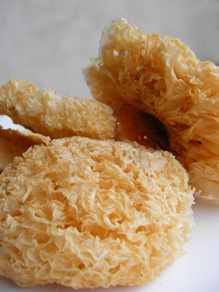 Dried White Fungus | I like to add this fungus in my wonton …