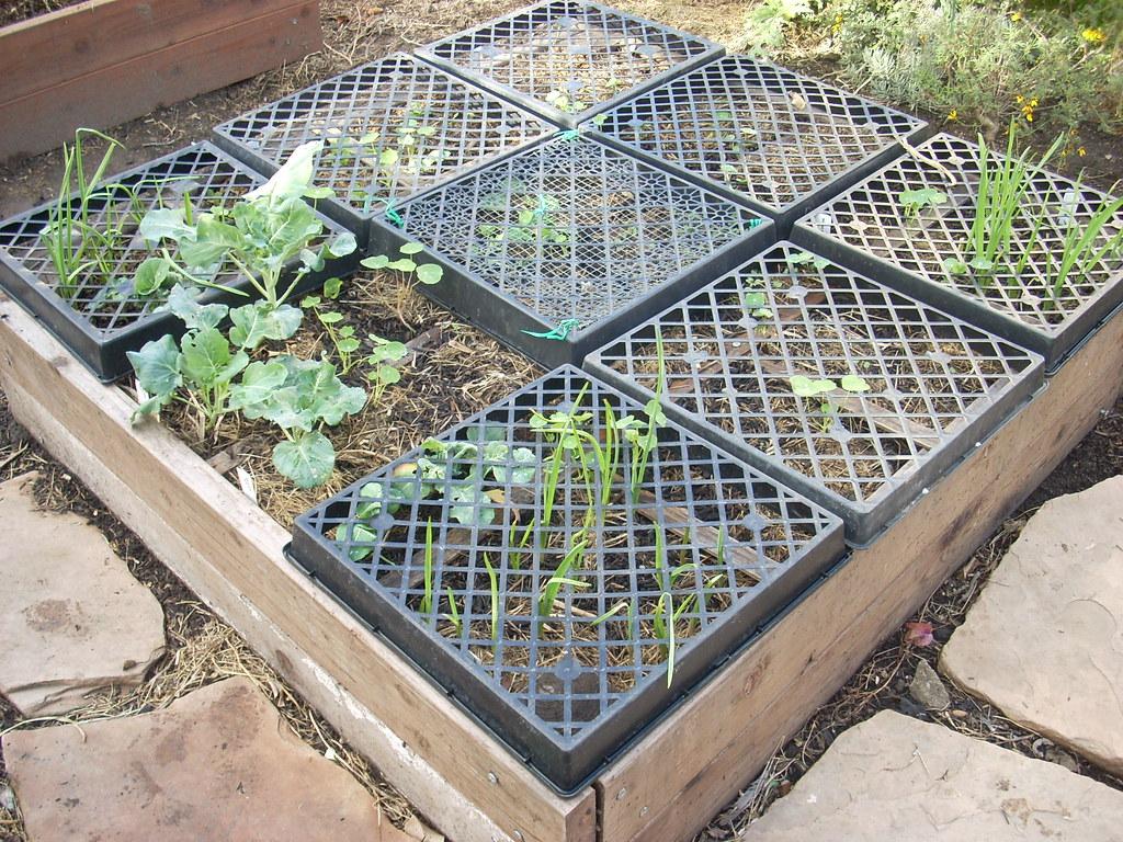 Raised Garden Bed Frame It All Safe