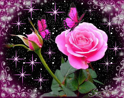 Flowers may beckon towards us, but they speak toward heaven and God ... Animated Pink Butterflies