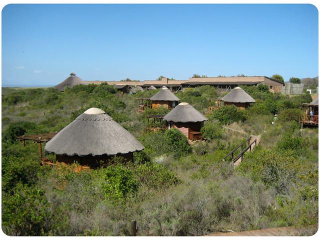 Albertinia South Africa  city photos : Albertinia, South Africa | Flickr Photo Sharing!