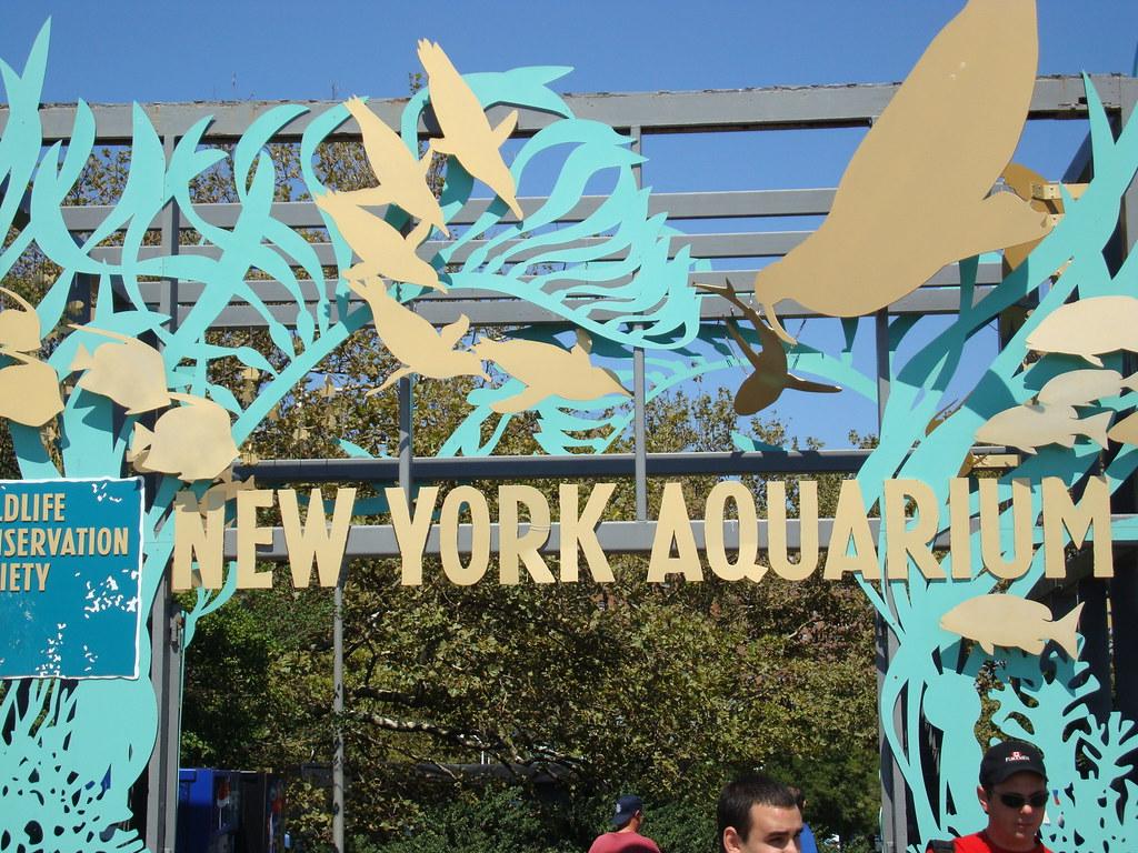 New York Aquarium Sign Taken At The New York Aquarium