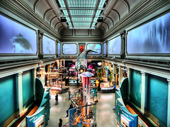 Smithsonian's Ocean Hall | by ` Toshio '