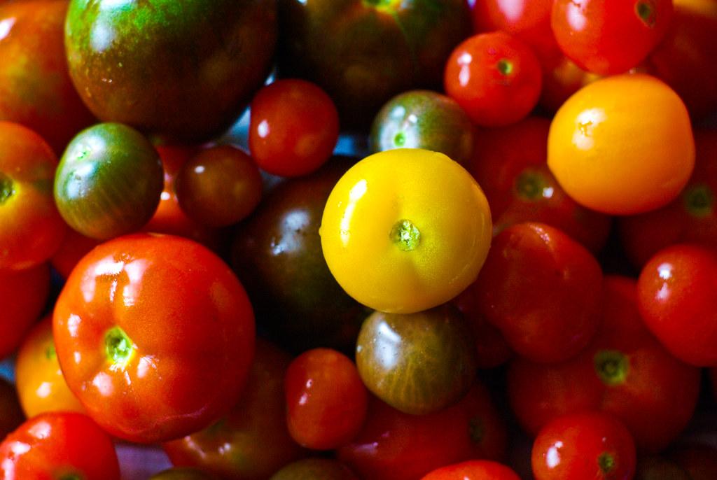 tomates encore une bonne ann e purin d 39 ortie rulez pil flickr. Black Bedroom Furniture Sets. Home Design Ideas