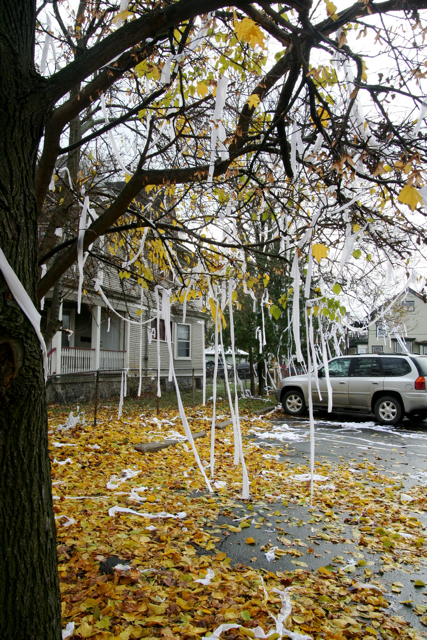 Toilet Paper TP - Tee Pee a House IMG_7642 | www.wikihow ...