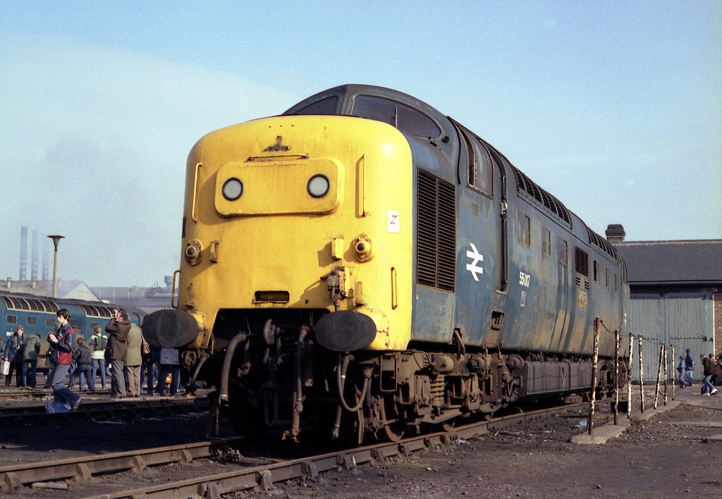 "55017 Doncaster Works 27.2.82 | 55017 (D9017) ""THE DURHAM ..."
