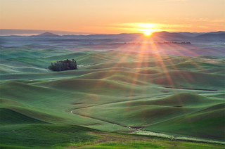 Palouse Sunrise Sunstar | by Ryan McGinty