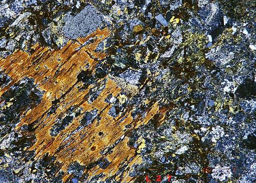 Biotite chlorite. | by thin section mineralogy petrology laboratory