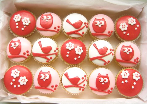 red owl and bird cupcake box | by hello naomi