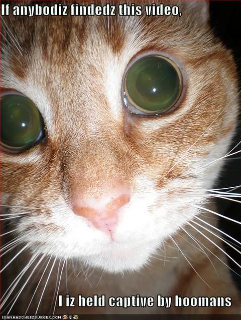 Cats Eye Road Las Cruces Nm Rentals