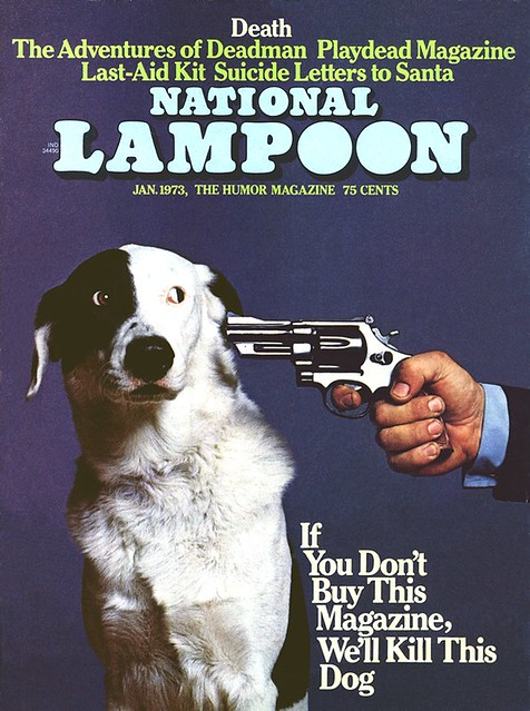 Image result for Buy or I will Shoot this dog