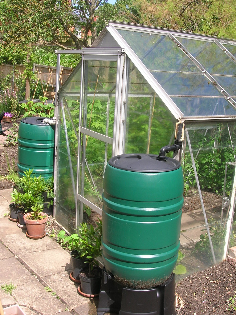 Greenhouse Water Butts These New Water Butts Have