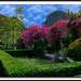 Gardens of Alfavia 2