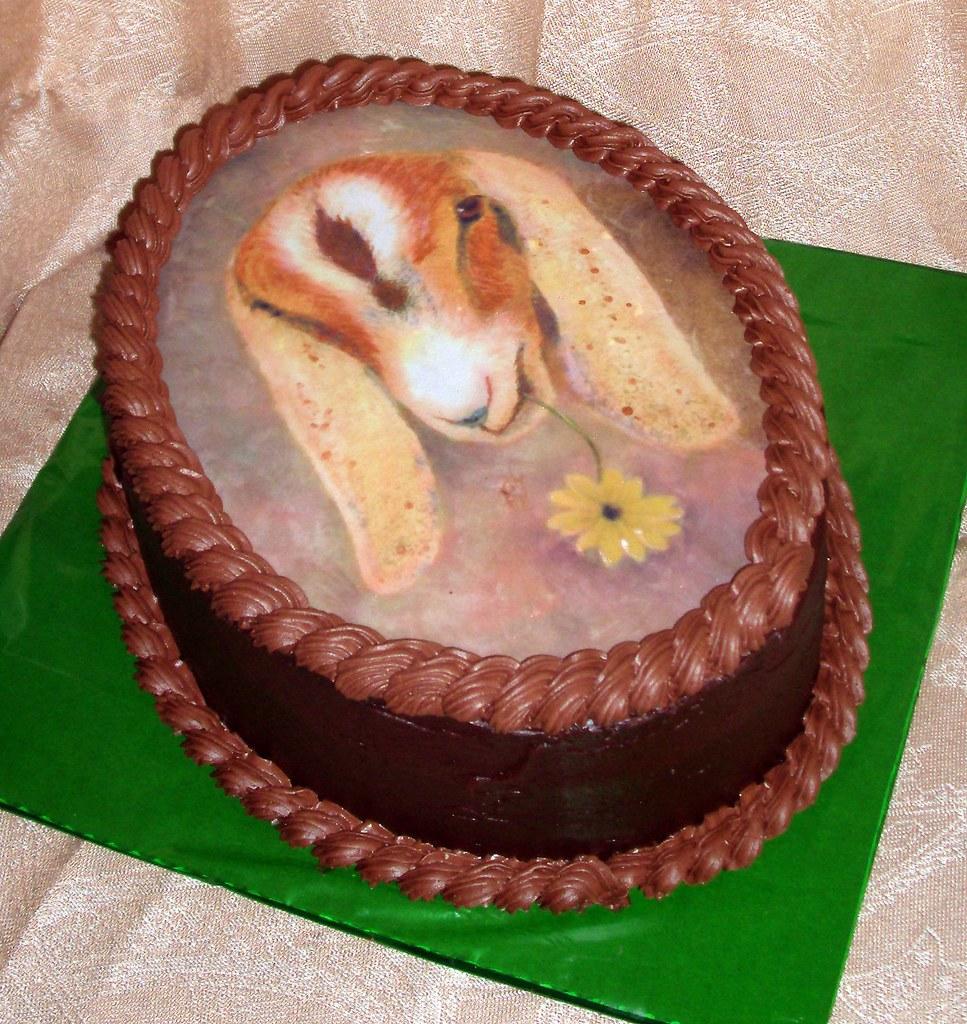 Stomach Cake