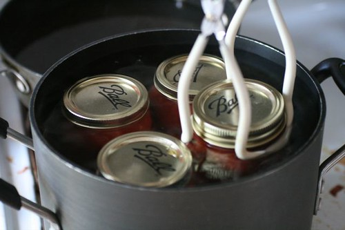 Canning Tomatoes | by thebittenword.com
