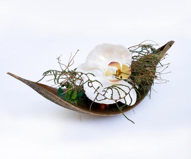 Gesteck cocosschale mit orchideen hier zu finden www - Duschvorhang mit orchideen ...